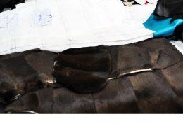 pulitura pelliccia